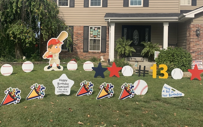 Baseball Player Display